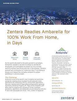 Zentera Ambarella Success Story